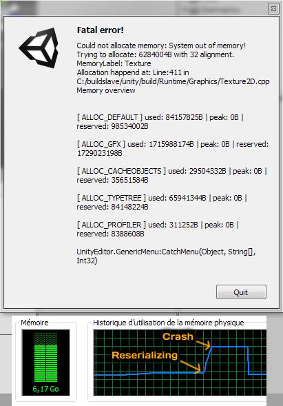 Capture d'écran de la fenêtre de crash